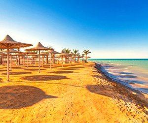 trippoint,travel agencu, ტურისტული სააგენტო,Sarm el sheikh,egypt,ეგვიპე,Шарм Эль Шейх,Египет,შარმ ელ შეიხ